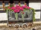 die Blumen Loore